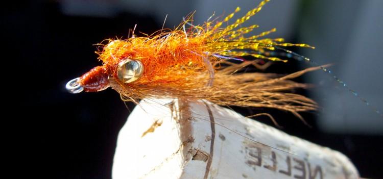Flaming Shrimp: Brown & Gold