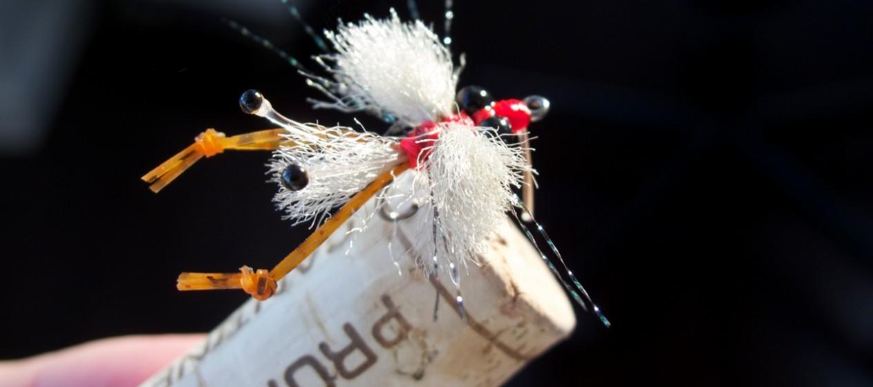 Merkin Crab: Pinching