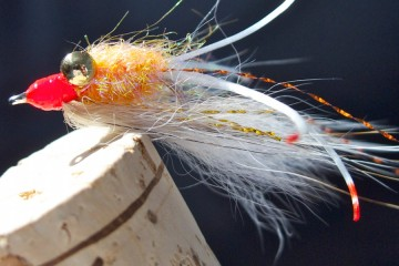 Shrimpy Dink in Orange & White