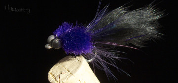 Redfish Toad: Purple